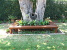 Tree Bench Seating