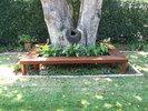 Tree Bench Seating